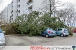 Baum auf Pkw - Sturmtief Niklas