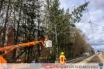 Baum in Oberleitung - Sturmtief Niklas