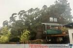 Baum auf Haus - Sturmtief Niklas